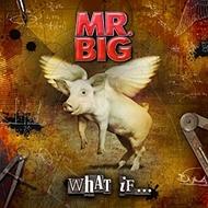 MR_BIG