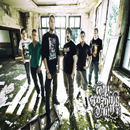 Come Crashing down band