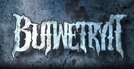 butwetryit_logo